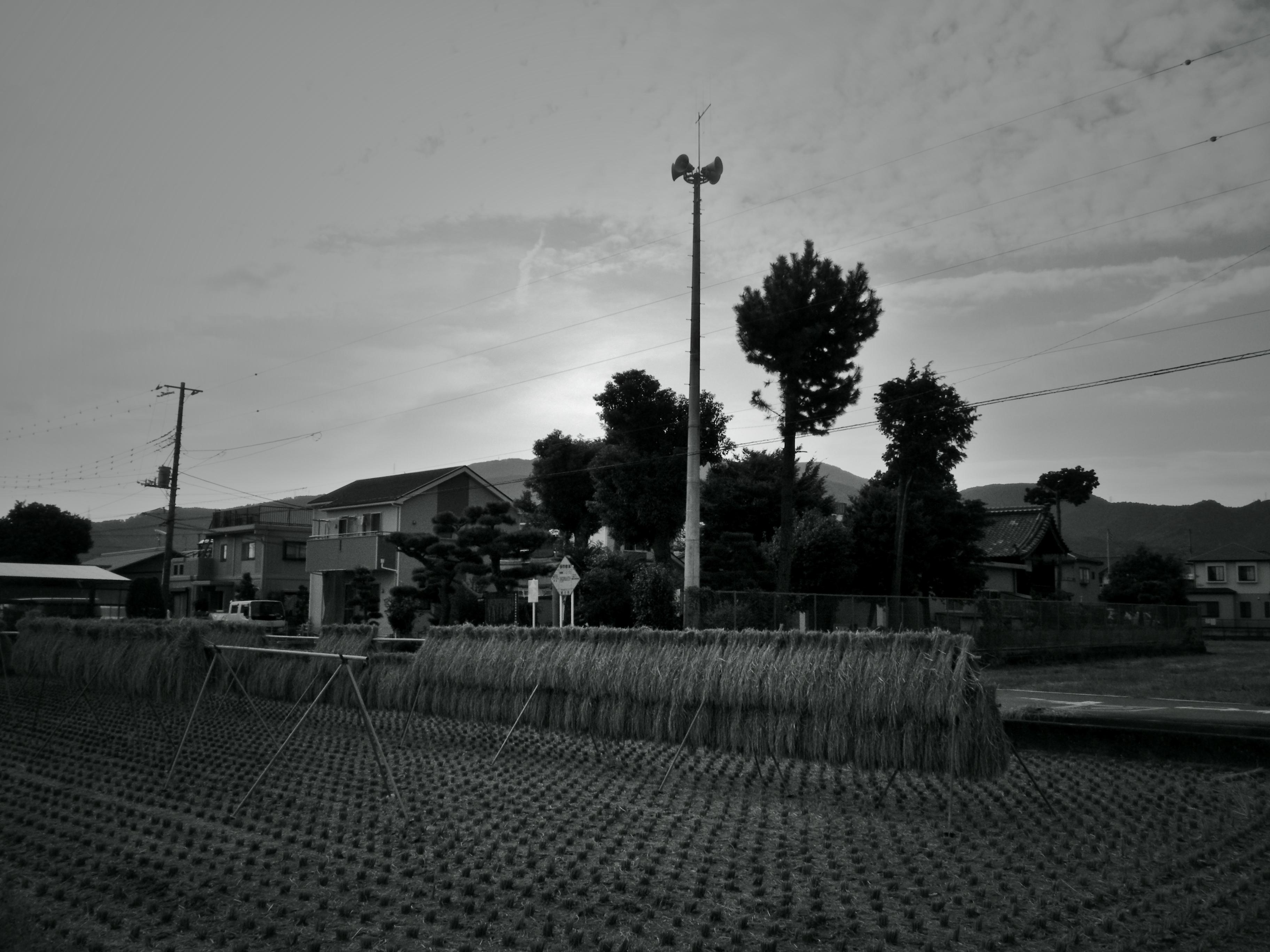 08/01/17